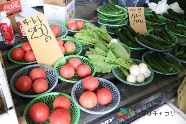 トマト・カブ・きゅうりのフリー素材(市場の写真)