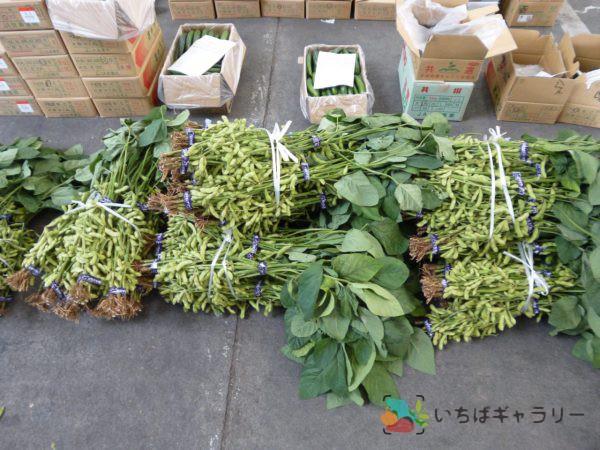 枝豆のフリー素材(市場の写真)