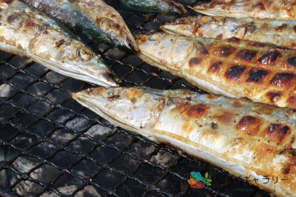 焼き秋刀魚3のフリー素材(市場の写真)