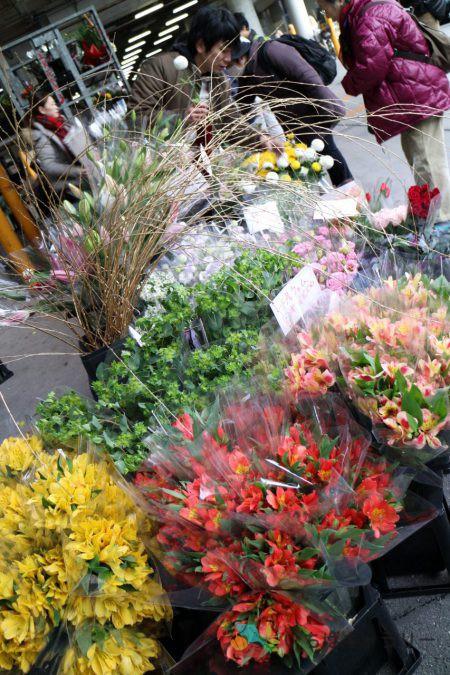 花3のフリー素材(市場の写真)