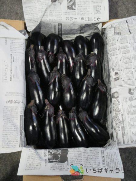 茄子のフリー素材(市場の写真)