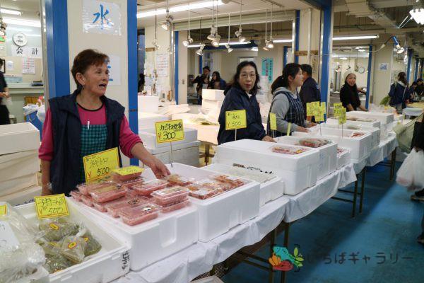 食鮮まつり_水産のフリー素材(市場の写真)
