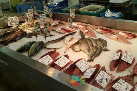 魚たちのフリー素材(市場の写真)