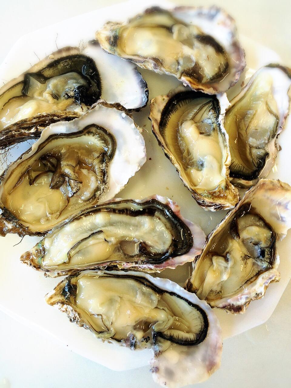 川崎市地方卸売市場南部市場水産牡蠣三栄水産山定水産
