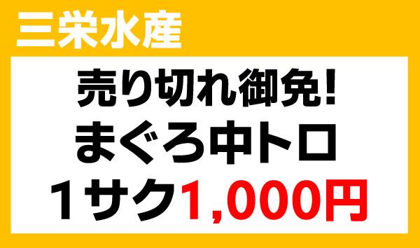 20160806_sanei