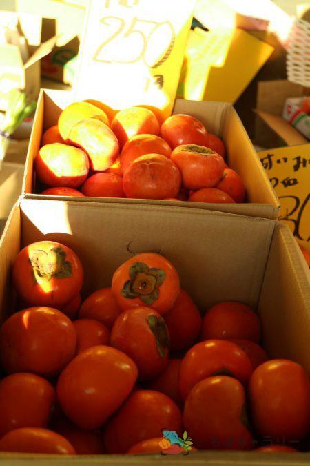 柿のフリー素材(市場の写真)