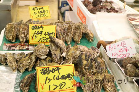 殻牡蠣のフリー素材(市場の写真)