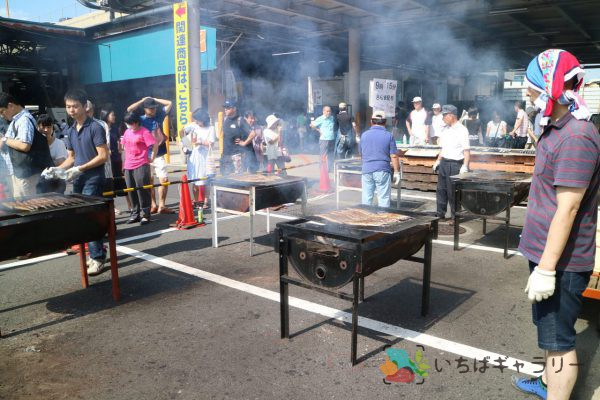 秋刀魚祭り1のフリー素材(市場の写真)