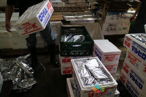秋刀魚4のフリー素材(市場の写真)