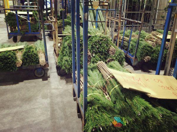 門松2のフリー素材(市場の写真)