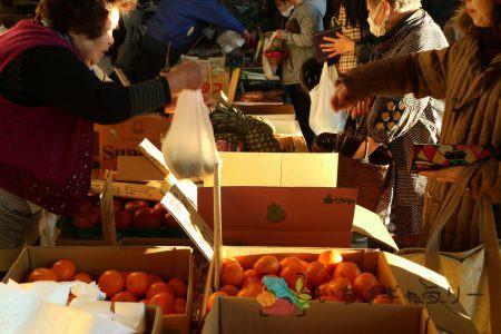食鮮まつり_青果3のフリー素材(市場の写真)