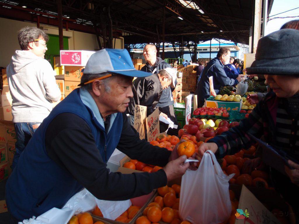 食鮮まつり_青果4のフリー素材(市場の写真)