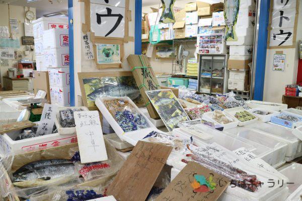 鮭のフリー素材(市場の写真)