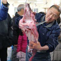 川崎市地方卸売市場南部市場いちばいちアンコウの吊るし切り