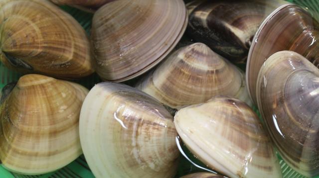 川崎市地方卸売市場 南部市場 水産業者 有限会社山定水産