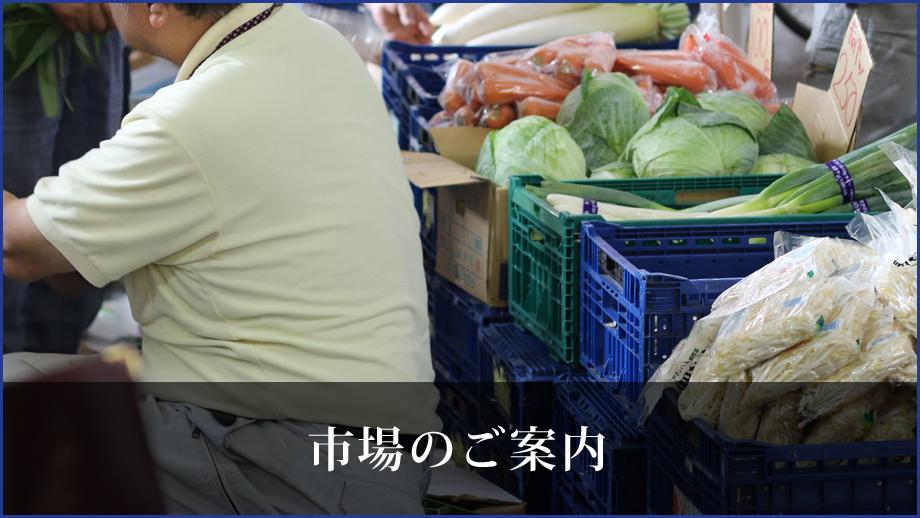 川崎地方卸売市場_南部市場の幸市場について
