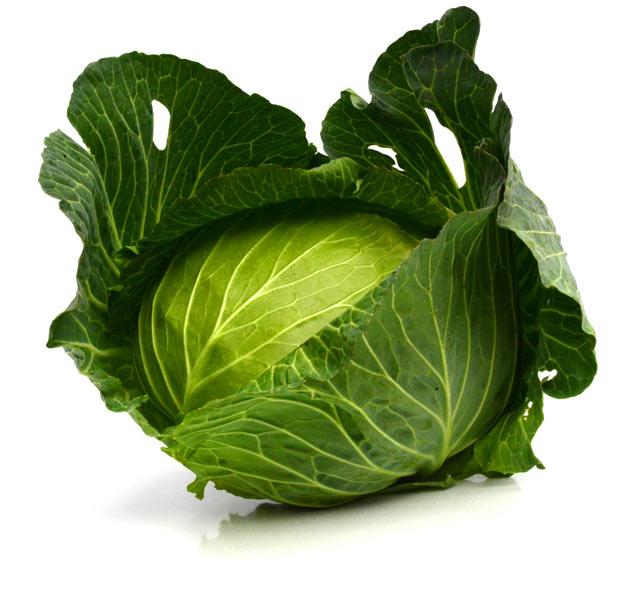 eyecatch-mekiki-cabbage
