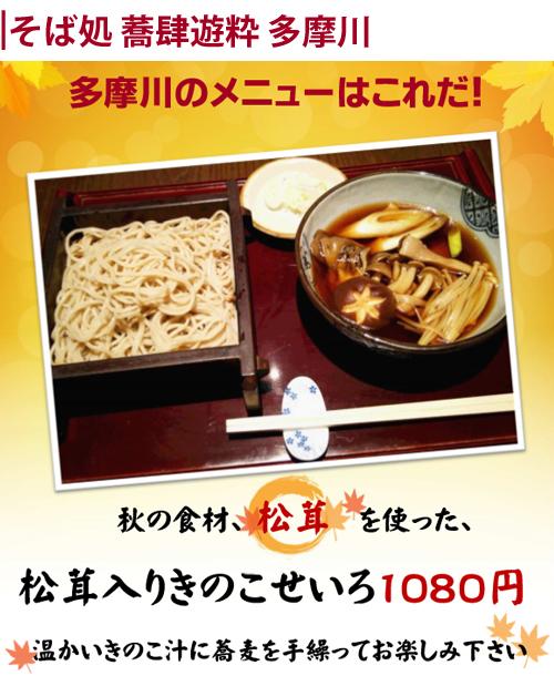 web-tenpo-tamagawa