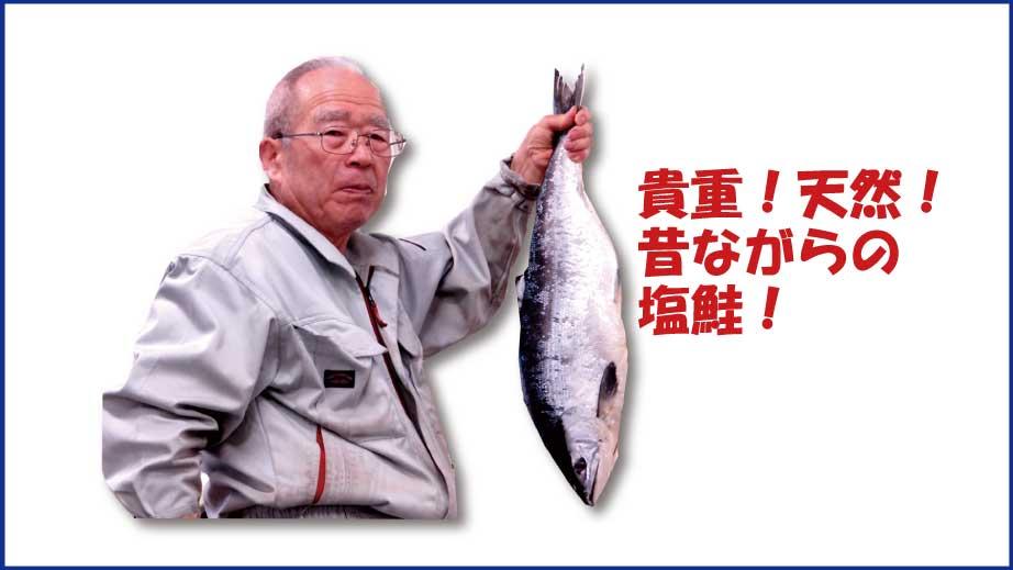 貴重!天然!昔ながらの塩鮭!