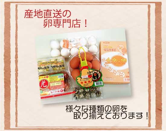 産地直送の卵専門店!