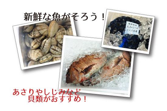 アサリやしじみなど貝類がおすすめ、のテキスト、しじみ、魚、アサリの写真