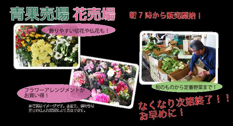 川崎幸市場いちばいち青果花売り場